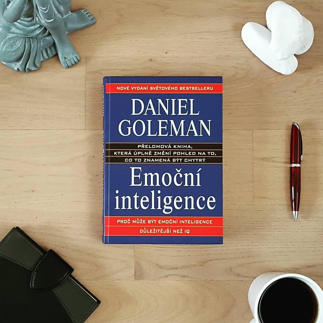 Emoční inteligence (Emotional Intelligence) - Daniel Goleman